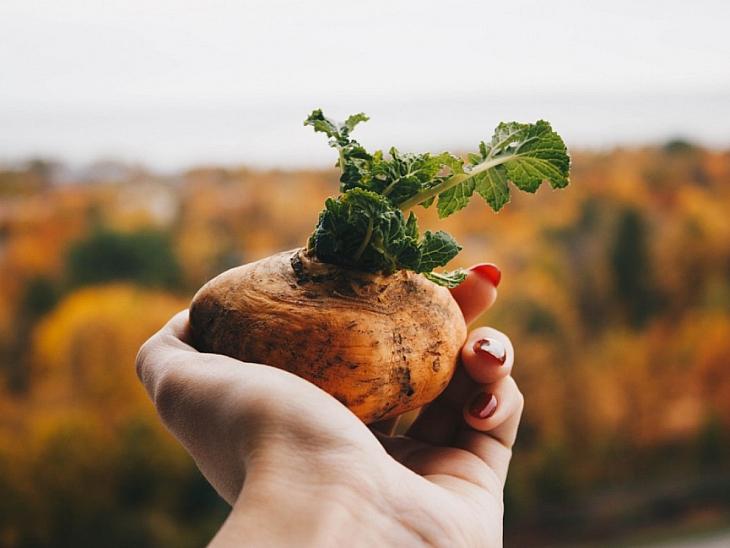 Çiğ Patates ve Çiğ Patates Suyunun Faydaları