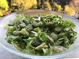 İç Baklalı Marul Salatası