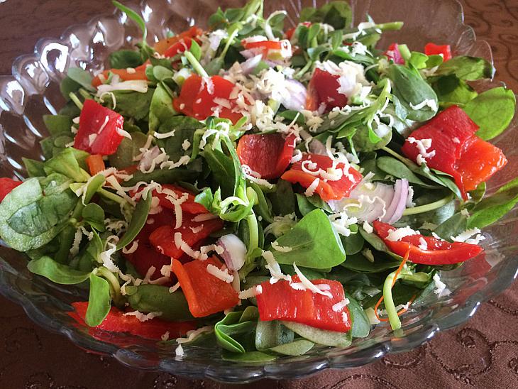 Kapya Biber Turşulu Semizotu Salatası