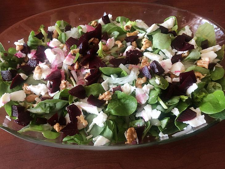 Pancar Turşulu Semizotu Salatası