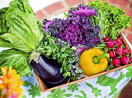 Bağışıklık Güçlendiren 4 Renk Meyve Sebze